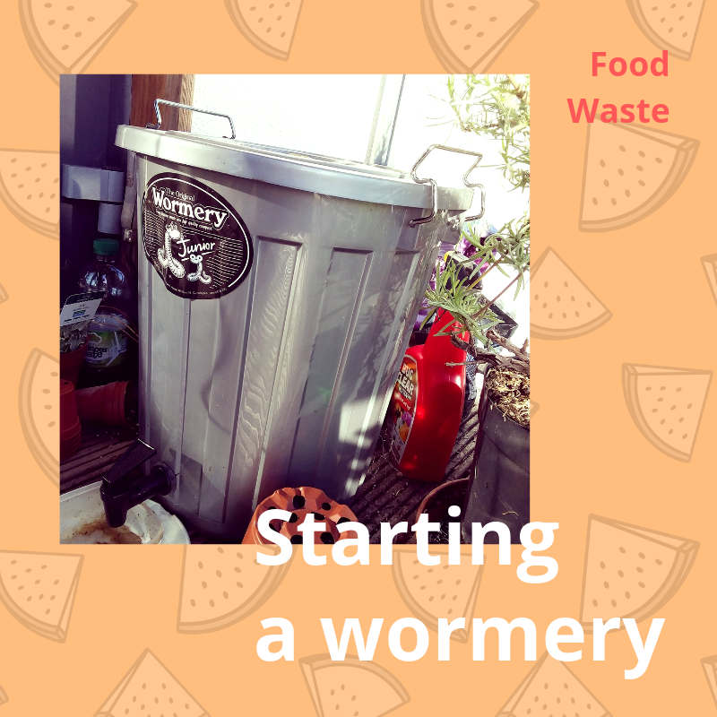 Starting a wormery
