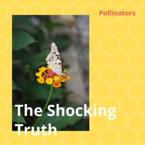 The Shocking Truth about Pollinators