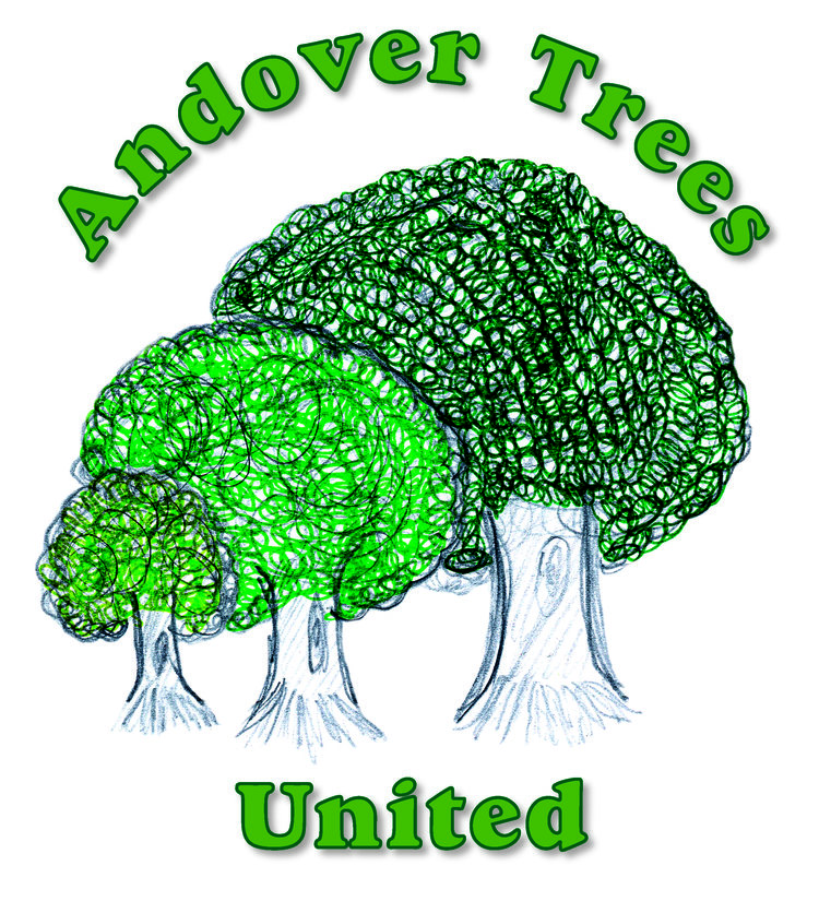 Andover Tree United, volunteer-led group and registered charity