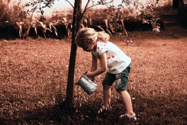 Child watering a tree. Photo by Pedro Kümmel on Unsplash